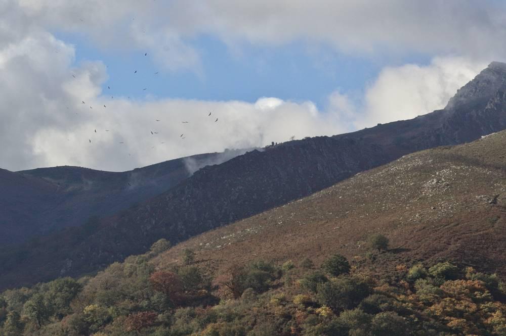 Pays Basque - Paysage Autour De Sare