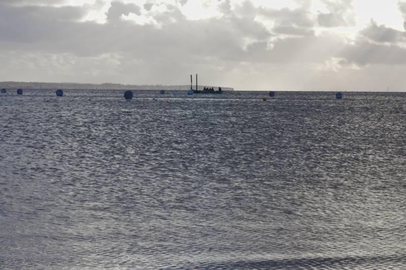 Barque sur le Bassin d'Arcachon