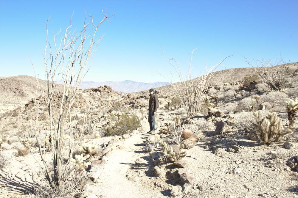 désert du sud de la Californie : Anza-Borrego
