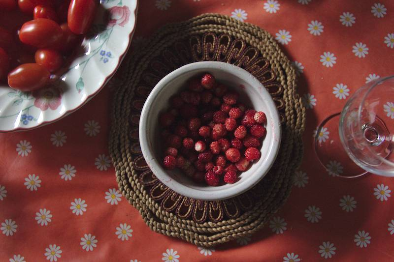 fraises sauvages