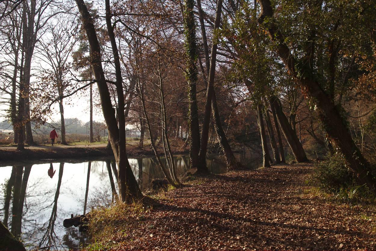 une promenade près du cours d'eau de Fongravey, le parc de Blanquefort