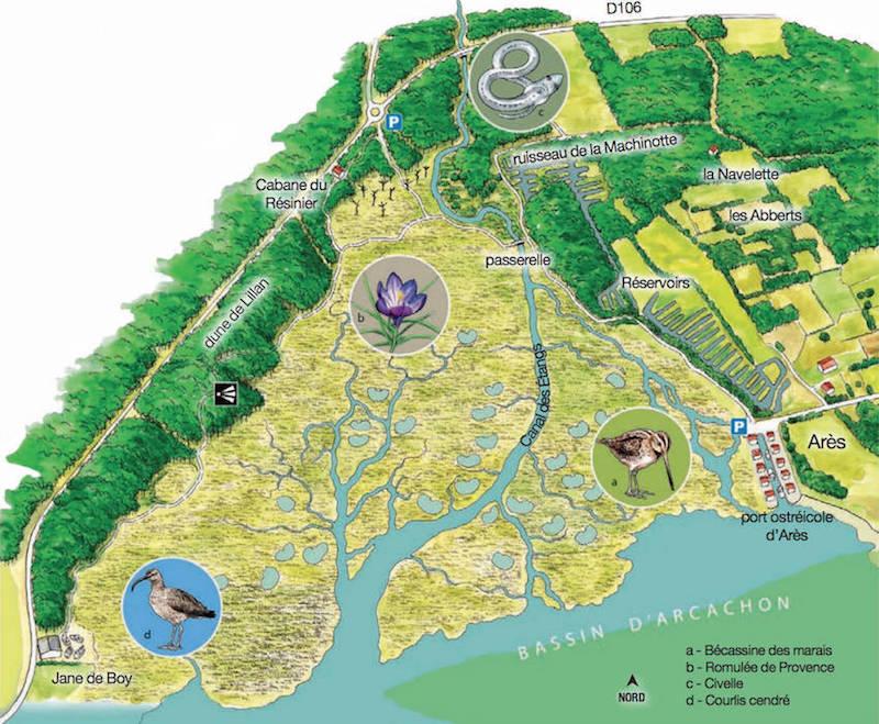 Carte Réserve Naturelle Prés Salés Arès Lège Cap Ferret