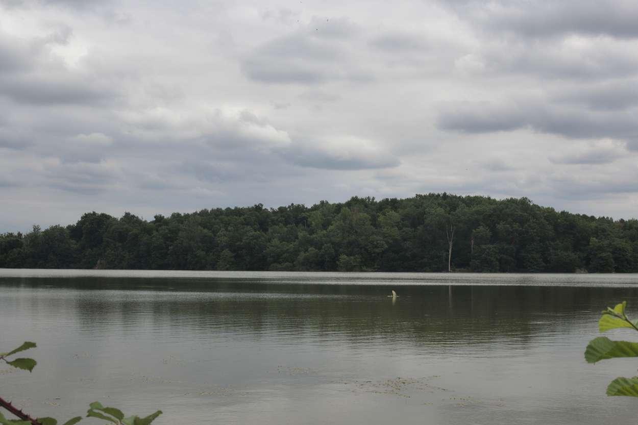Lac de la Prade près de Bazas Sud Gironde
