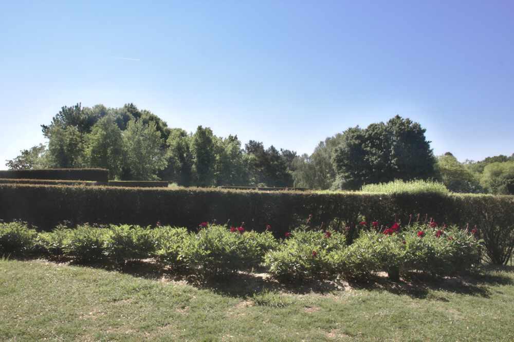 La pivoineraie du Parc floral de Bordeaux