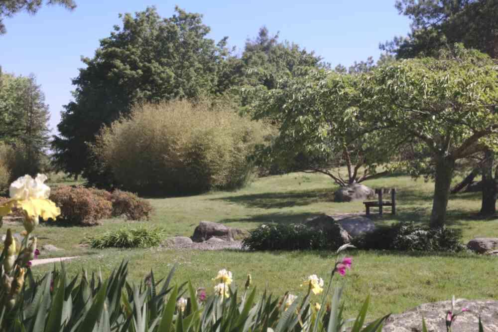 Torrent du Parc Floral de Bordeaux