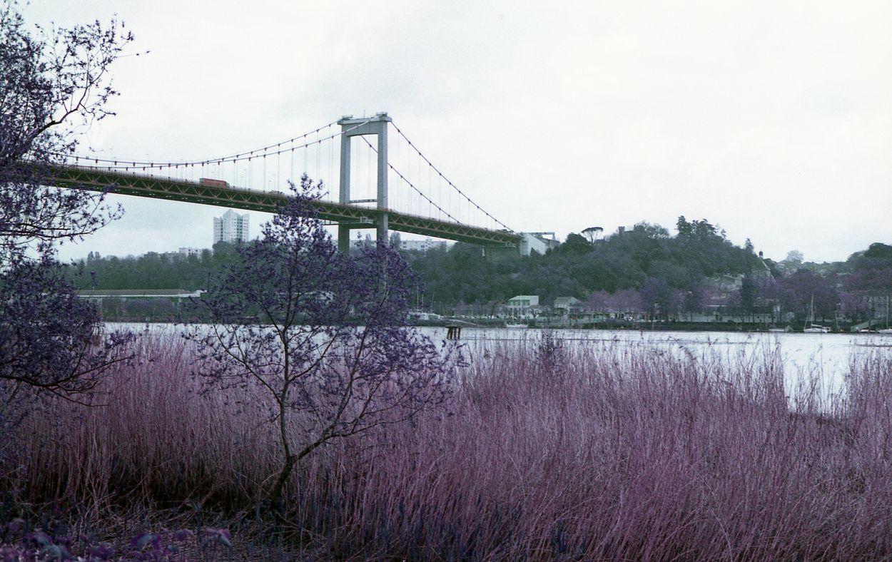 Le Pont d'Aquitaine à Bordeaux en LomoChrome Purple