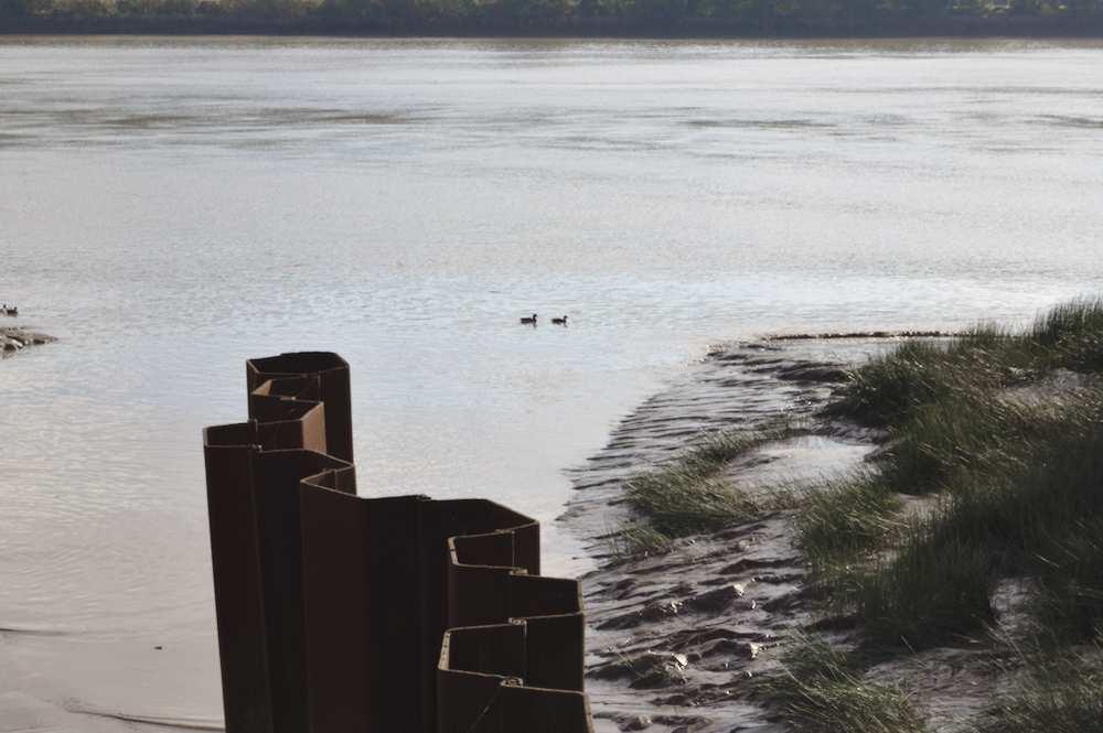 Rives boueuses de la Garonne