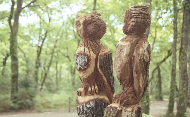 Scultpures de bois au Bourgailh