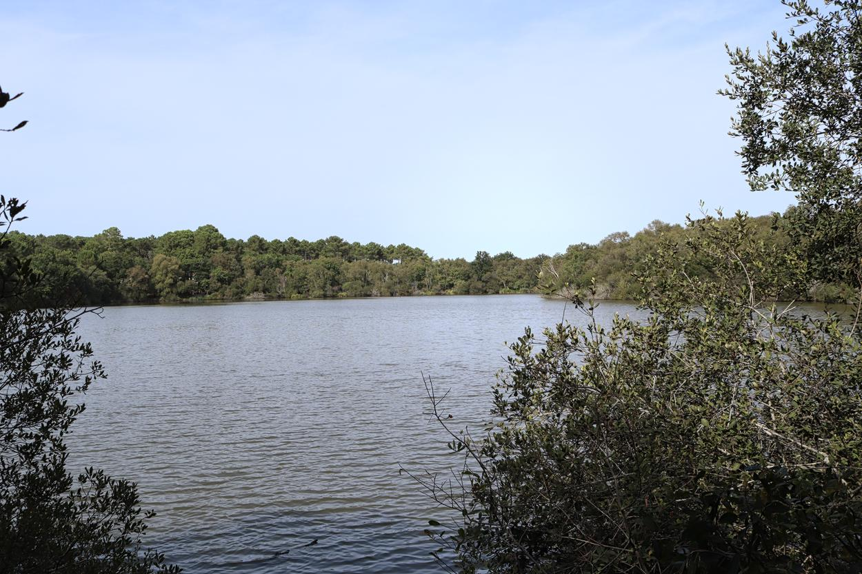 Lagune de Contaut-01